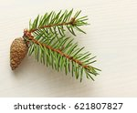 Lonely Green Pine Branch And...