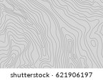 topographic map background... | Shutterstock .eps vector #621906197