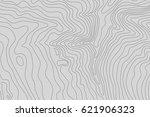 topographic map background... | Shutterstock .eps vector #621906323