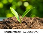 Earth Day Conceptual New Grown...