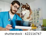 veterinary clinician showing... | Shutterstock . vector #622116767