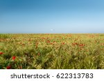 view at uncultivated field with ... | Shutterstock . vector #622313783