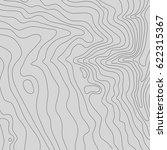 topographic map background... | Shutterstock .eps vector #622315367