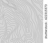 topographic map background...   Shutterstock .eps vector #622315373