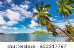 palm trees on tropical island. | Shutterstock . vector #622317767
