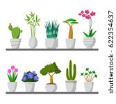 set of small plants on shelf ... | Shutterstock .eps vector #622354637
