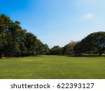 Beautiful Park And Blue Sky