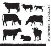 Stock vector silhouettes of grass caws and baby cows in different poses 622421267