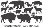 black silhouettes animals of... | Shutterstock .eps vector #622484663