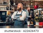 portrait of redhead bearded... | Shutterstock . vector #622626473