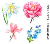 forget me not flowers magnolia... | Shutterstock . vector #622737533