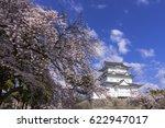 cherry blosoms in odawara... | Shutterstock . vector #622947017