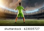 soccer player celebrating a... | Shutterstock . vector #623035727