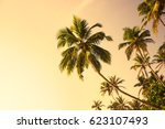 tropical beach with palm trees. ... | Shutterstock . vector #623107493