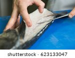 filleting and removing the bone ... | Shutterstock . vector #623133047