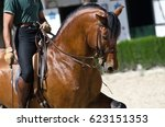 Andalusian Riding School  Jere...