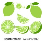 lime with green leaves  slice... | Shutterstock .eps vector #623340407