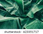 Tropical Banana Leaf Texture...