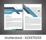 annual report leaflet brochure... | Shutterstock .eps vector #623370233