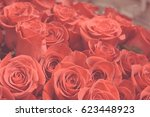 Stock photo bouquet of coral roses bouquet of roses rose red valentines day wedding day background rose 623448923