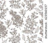 medicinal plants vector... | Shutterstock .eps vector #623560157