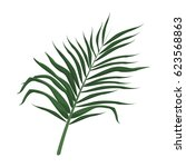 tropical leave palm tree image | Shutterstock .eps vector #623568863
