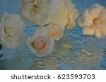 beautiful roses reflected in... | Shutterstock . vector #623593703