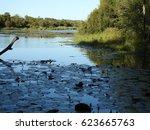 scenic view kruger park. | Shutterstock . vector #623665763