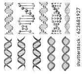 dna or rna helix vector... | Shutterstock .eps vector #623681927
