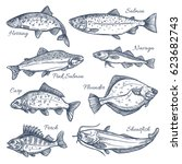 fishes sketch vector isolated... | Shutterstock .eps vector #623682743