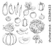 vegetables vector icons set.... | Shutterstock .eps vector #623684633