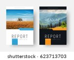 black and white cover for the... | Shutterstock .eps vector #623713703