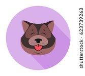 doggy head of tibetan mastiff...   Shutterstock .eps vector #623739263