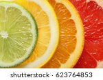 four slices of citrus fruits ... | Shutterstock . vector #623764853
