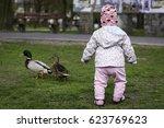small kid chase wild ducks in...   Shutterstock . vector #623769623