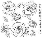 sketch rose flower set. pencil... | Shutterstock .eps vector #623861297