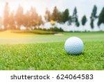 golf ball on golf course  flag... | Shutterstock . vector #624064583