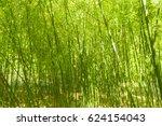 bamboo trees | Shutterstock . vector #624154043