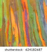 vertical rainbow eucalyptus...   Shutterstock . vector #624182687