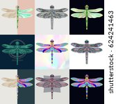 set of dragonfly logos.... | Shutterstock .eps vector #624241463