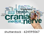 Small photo of Cranial nerve word cloud concept on grey background.