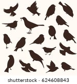Stock vector set of decorative bird silhouettes vector illustration birds flying and sitting 624608843