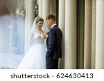 bride and groom drink champagne ... | Shutterstock . vector #624630413