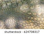 Crocodile Skin Was Popular For...