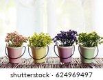 lovely flowers in pot... | Shutterstock . vector #624969497