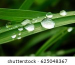 color macro spring photography... | Shutterstock . vector #625048367