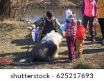 Small photo of GOMEL, BELARUS - 9 April 2017: A great kind dog gets acquainted with people in the nature.