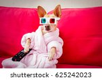 chihuahua dog watching tv or a... | Shutterstock . vector #625242023
