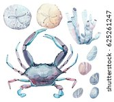 hand drawn sea set. there are ... | Shutterstock . vector #625261247