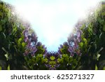 spring flowers  wisteria | Shutterstock . vector #625271327